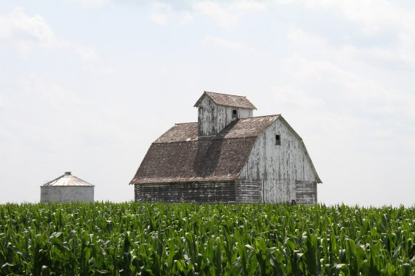 The Uniqueness of Rural Life: A Social Worker's Reflections